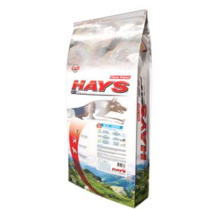 Hays Classic Original Chien