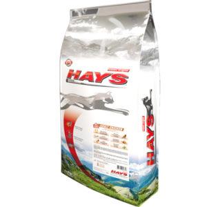 Hays Classic Original Chat